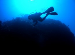 Diving trip to the north coast, Jamaica